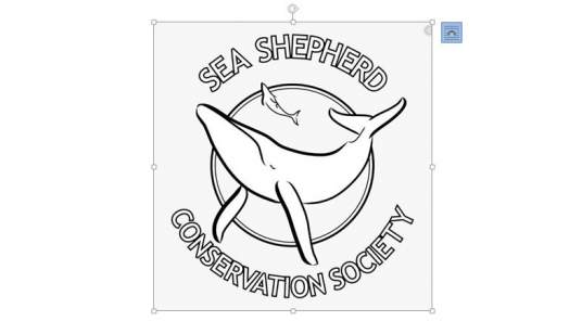 Logo seaShepherds groesserer